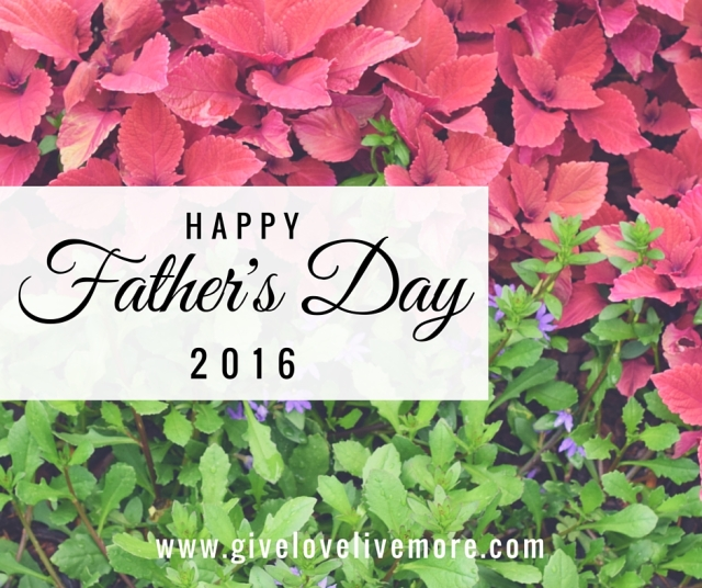 Happy Father's Day 2016 #HappyFathersDay #HFD #GiveLoveLiveMore #Blog #flowers #Pink #purple